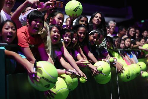 Винус Уильямс стала самой возрастной финалисткой турнира WTA вистории